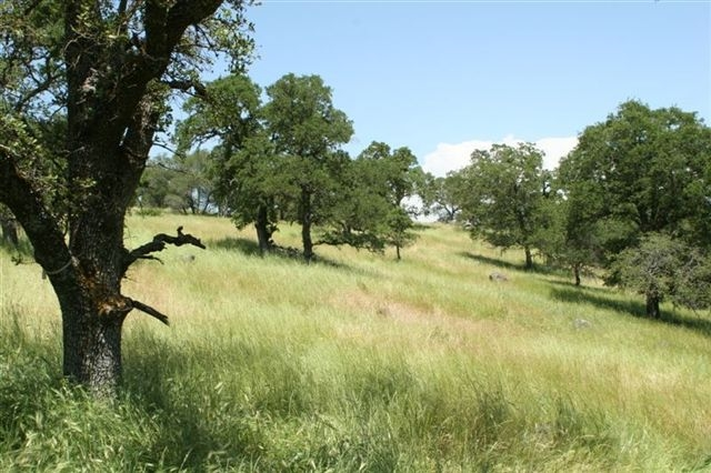 Clover Valley has wonderful grassy hills, oaks, and rock formations among its many natural resources.